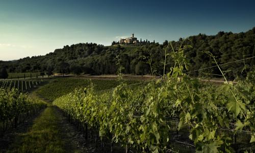 Ferie i Toscana