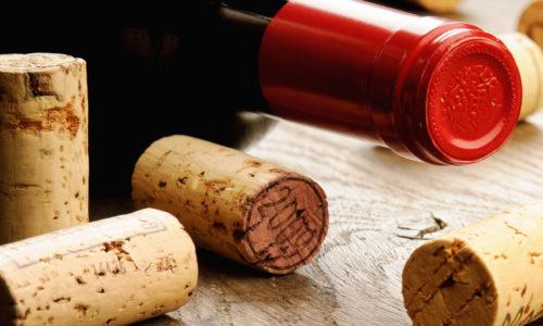 Vin og vilt